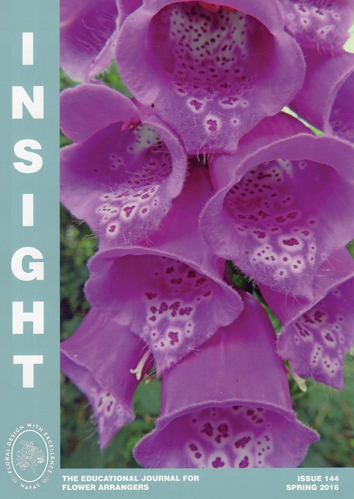 Insight-Spring-2018