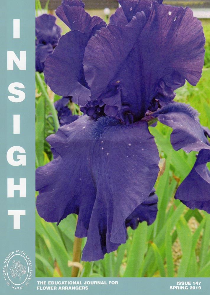 Insight Spring 2019
